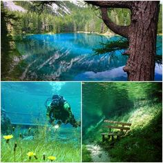 Grüner See..a park in Austria that floods every spring for a few weeks and the walkways become underwater scenery. Definitely want to do this