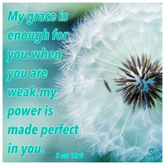 """""""My grace is enough for you. When you are weak, my power is made perfect in you."""" (2 Corinthians 12:9 NCV)"""