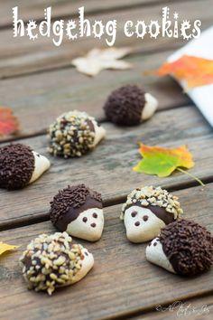 Christmas Desserts, Christmas Treats, Christmas Baking, Christmas Cookies, Hedgehog Cookies, Hedgehog Treats, Cute Food, Yummy Food, Delicious Desserts
