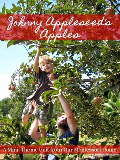 Johnny Appleseed's Apples Mini-Theme Unit & Lesson Plans - A Free Download from Our Montessori Home