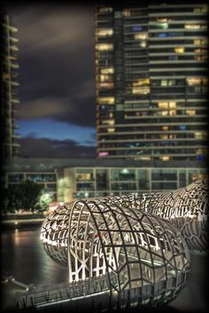On the side of the Webb bridge in Docklands, Melbourne, Australia Amazing Photography, Travel Photography, Daily Photo, Melbourne Australia, Rooftop, Skyscraper, Electric Eel, Places To Go, Sunrise