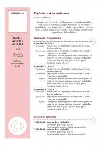 curriculum-vitae-modelo3c-granate