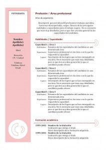 Plantilla de Currículum Vitae Combinado - Modelo 3