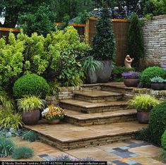 Paved steps link upper and lower stone terraces, edged in box domes, evergreen fir, bay, euonymus and pots of ornamental grasses, pansies and campanu