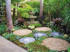 succulent garden stepping stones - Google Search