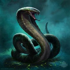 Incredible illustration of serpent. Analogous colour scheme and effective backlighting to emphasise shape and form of snake. Tattoo Cobra, Snake Tattoo, Fantasy Creatures, Mythical Creatures, Snake Monster, Snake Painting, Snake Wallpaper, Poisonous Snakes, Giant Snake