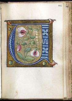 """U"" Leaf from Alphabet Book 