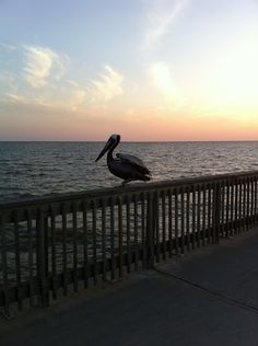 Fairhope Pier - Fairhope, Alabama