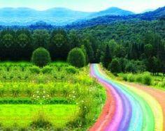 Camino de color