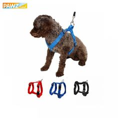 Cheap vest leather, Buy Quality vest outerwear directly from China harness cat Suppliers: Pet Harness Nylon Adjustable Safety Control Restraint Cat Puppy Dog Harness Soft Walk Vest Large Dog 3 Colors Animals Harness Walking Training, Training Your Dog, Training Tips, Pet Dogs, Dogs And Puppies, Pet Vet, Dog Body Language, Make Dog Food, Dog Safety