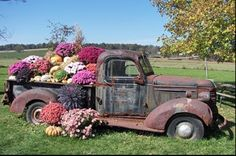 "A flower ""truck"" bed. This is a MUST!"