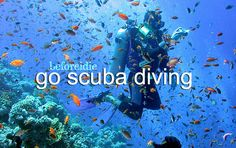 before i die go scuba diving