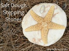 Turn Vacation Souvenirs into Salt Dough Stepping Stones (I don't know about stepping stones, but this is a cool way to display shells like these)