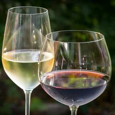 Gary Miller shares his easy homemade wine recipe using fruits or honey to create a cheap wine from home. Recipes Using Fruit, Real Food Recipes, Real Foods, Homemade Wine Recipes, Boating Holidays, Texas Kitchen, Mother Earth News, Cheap Wine, French Wine