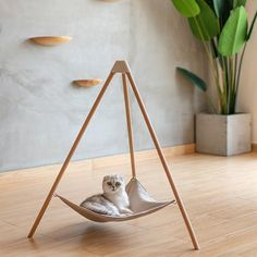 I like Triangular Bed - Designer I like - Pinkoi Pet Beds, Dog Bed, Dog Furniture, Cheap Furniture, Luxury Furniture, Cat Hammock, Cat Playground, Cat Room, Animal Projects