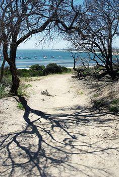 Hampton Beach Melbourne Victoria Australia by _barb_, via Flickr