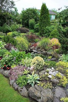 Rock garden design ideas vary in sizes, types of green and flowering plants and color combinations, but they all allow to create beautiful backyard landscaping centerpieces and hide unappealing spots…MoreMore - My Gardening Path Landscaping With Rocks, Front Yard Landscaping, Landscaping Ideas, Mulch Landscaping, Backyard Ideas, Natural Landscaping, Southern Landscaping, Mulch Ideas, River Rock Landscaping