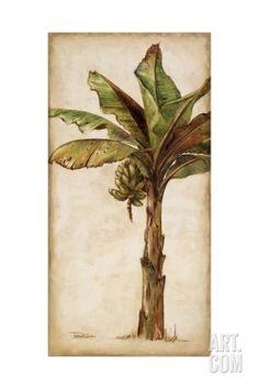 Tropic Banana II Giclee Print by Patricia Quintero-Pinto at Art.com