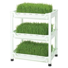 Soil-Free Wheatgrass Grower - Grow your own wheatgrass sprouts for smoothies and salads with this must-have tiered planter, perfect for adding a healthy touch to any meal.