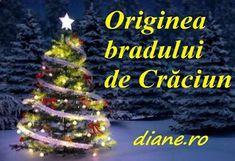 Bradul de Crăciun - Origine Spirit, Christmas Tree, Holiday Decor, Blog, Teal Christmas Tree, Xmas Trees, Blogging, Christmas Trees, Xmas Tree