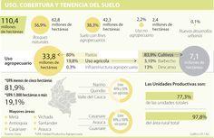 Nariño, Quindío y Valle del Cauca lideran la despensa agrícola del país