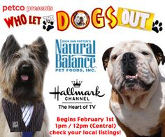 Watch today! Tillman and Norman Scooter for Who Let the Dogs Out, Fridays on Hallmark Channel.