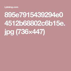 895e7915439294e04512b68802c6b15e.jpg (736×447)