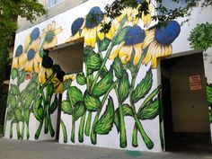 Black-eyed Susan (Rudbeckia hirta) public art mural sized 20 ft. tall by around 30 ft. wide, located in Ithaca, NY. Created by Kellie Cox