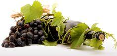 Nueva tienda de vinos del Portal de La Rioja