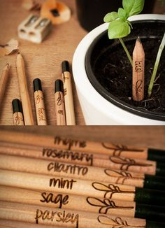 """brain-food: """" What if instead of throwing your pencil stubs away when they´re too short to use, you could plant them, add some water and watch them grow? Meet Sprout, a pencil with a seed! Zero Waste, Brain Food, Green Life, Sustainable Living, Sustainable Products, Eco Friendly, Stationery, Make It Yourself, Gifts"""