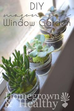 A cutie DIY that's so easy: a winter windowsill garden with succulents planted in mason jars!