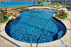 Superior Pools of Southwest Florida - Superior Pools A Custom Pool Builder Near You Your Pool Contractor. Pool Kings, Pool Contractors, Rock Waterfall, Pool Fashion, Luxury Pools, Building A Pool, Custom Pools, Pool Builders, Pool Designs