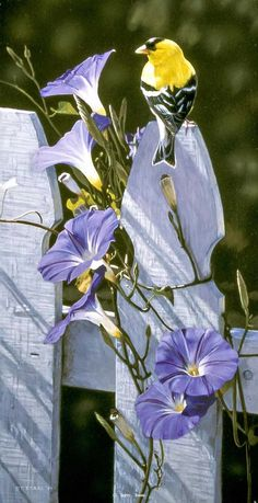 Bird perched on a fence with morning glories painting