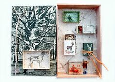 mano kellner, project 2015, kunstschachtel / art box nr 34/2015, rehe /deer (sold)