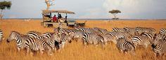 New itineraries to Kenya and Seychelles.