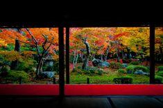 Enko-ji Temple, Kyoto 京都 圓光寺