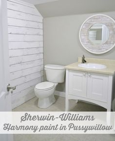 Sherwin Williams Harmony Paint in Pussywillow
