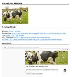 (3) Hoe een gegoogelde koe mij 817,50 kostte