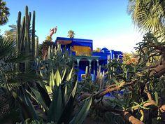 « حديقة ماجوريل--Majorelle Garden--a twelve-acre botanical garden designed by expatriate French artist Jacques Majorelle in the and during the…