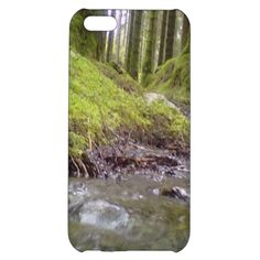 Forest & Water Case For iPhone 5C