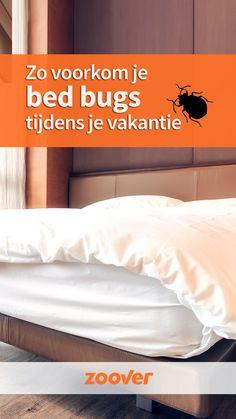 Bed bugs, ook wel bekend als bedwantsen zijn vreselijke beestjes. Bedwantsen bestrijden? Top, maar voorkomen is nog beter. Zoover geeft tips om een beet tegen te gaan. Bed Bugs, Bed Pillows, Pillow Cases, Wanderlust, Tips, Home, Everything, Pillows, Ad Home