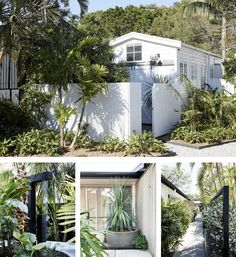 Landscaping at The Bower Byron Bay Kentia Palm, Cast Iron Plant, Luxury Accommodation, Exotic Plants, Tropical Garden, Byron Bay, Coastal Homes, Garden Inspiration, Landscape Design