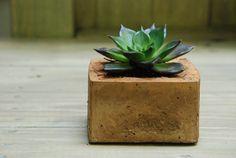 Concrete pots to make at home