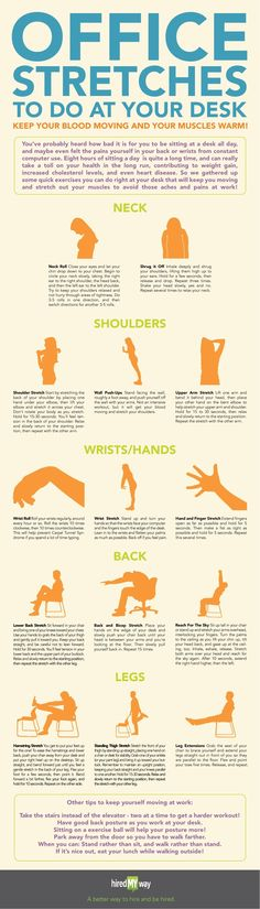 Office Stretching Exercises | Health You must have heard people saying they have pain in their back or neck. This is because they cont inuously keep on working at their desks with moving for a second. Those who are aware of the desk exercises never undergo such pains. Here is an infographic demonstrating office stretching exercises that can be done sitting at your desk including the movement of shoulders, neck, hands, back and legs.