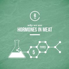 Learn why hormones are used in cattle production - and why it poses no threat to you. Cattle, Over The Years, Masters, Insight, Poses, Learning, Health, Gado Gado, Master's Degree