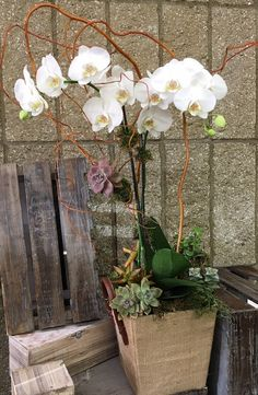 Gelson's Hands-On Floral Class: How to Create an Orchid Upgrade #floralclass
