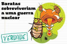 Maria Bonita e Poesia: Por que as baratas podem sobreviver a uma guerra n...