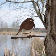 Dating-Website für Vogelliebhaber