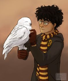 i wanted to draw hedwig