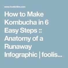 How to Make Kombucha in 6 Easy Steps :: Anatomy of a Runaway Infographic | foolish fire